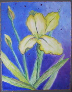 """Spring Flowers, Iris""  14""x 11"", Acrylic on Paper Mounted on Panel  Can.$150.00"